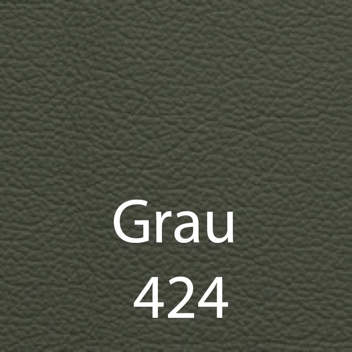 Grau 424 Leder