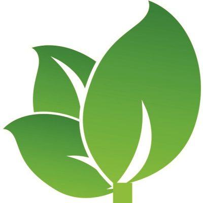 Naturnah Möbel Logo