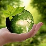 nachhaltigkeit im büro