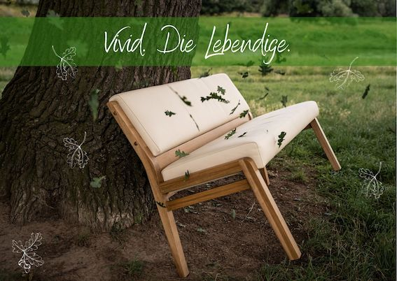 Sitzbank Vivid modern Massivholz Echtleder Qualität